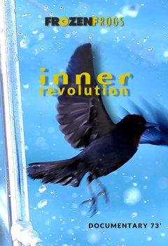 Inner Revolution movie poster