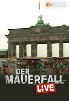 Der Mauerfall live - Vier Stunden im November Filmplakat