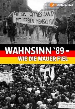 Wahnsinn '89 - Wie die Mauer fiel movie poster