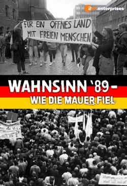 Wahnsinn '89 - Wie die Mauer fiel