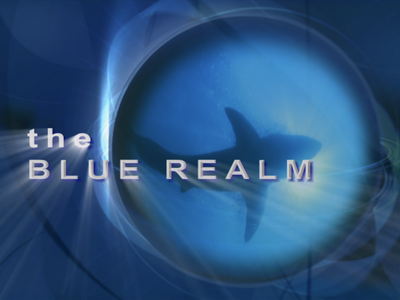 The Blue Realm