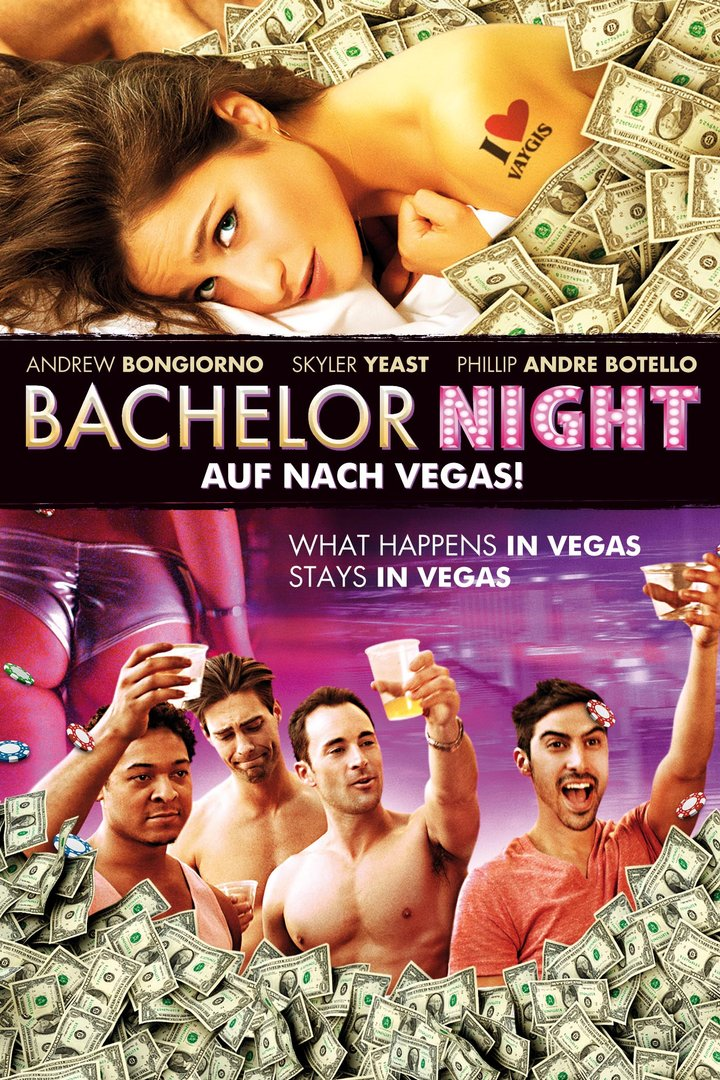 bachelor night 2014 full movie watch online free